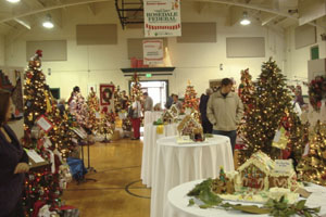 Festival of Trees lights up cancer research
