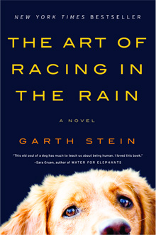'The Art of Racing in the Rain' surpasses expectations