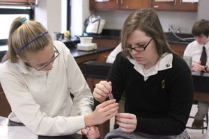 Science department offers students option to graduate with distinction in science